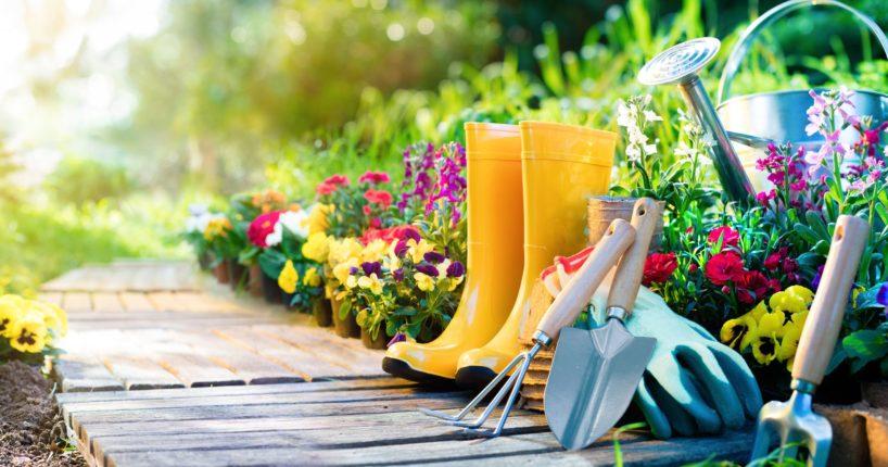 Garden Studios An Innovative Concept of Present Date